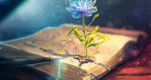 2977921-books___mixed-wallpapers